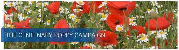 The Centenary Poppy Campaign